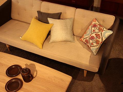 15SS_cushion